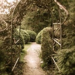 Кованые арки 10