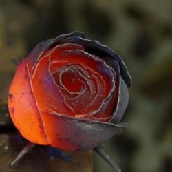Кованая роза 4